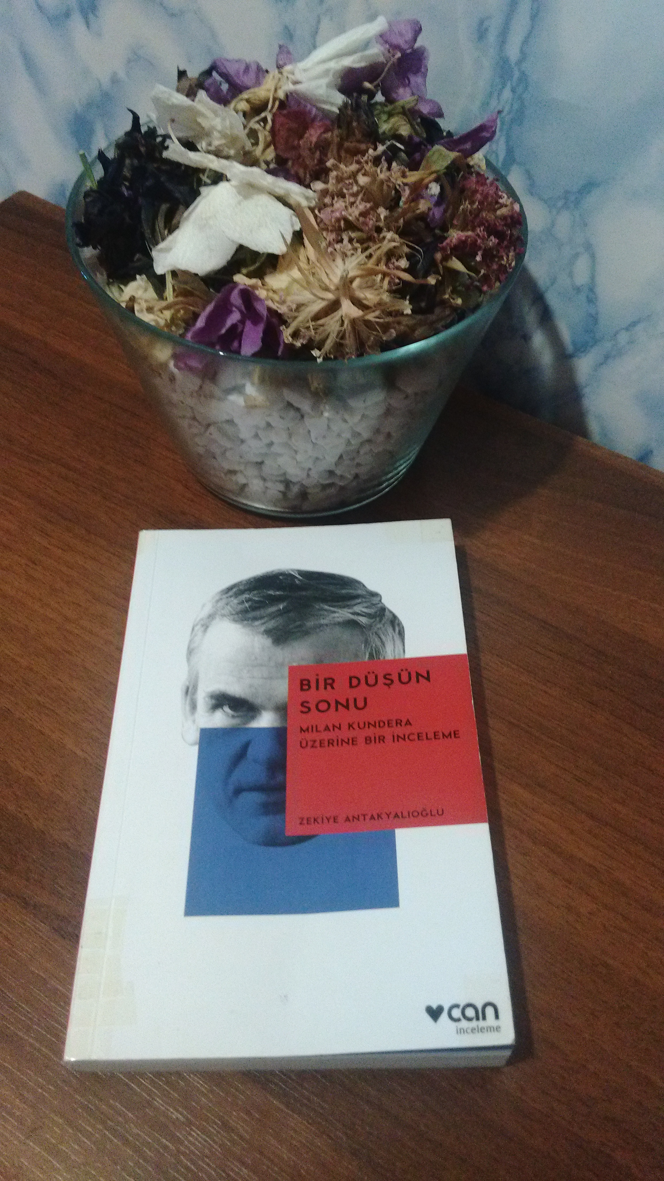 Bir Düşün Sonu – Milan Kundera Üzerine Bir İnceleme